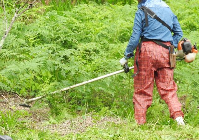 藤岡市で草刈りにかかる料金相場は?追加料金や業者選びのコツまで解説